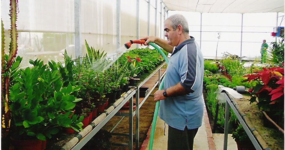 Producción y mantenimiento de planta.
